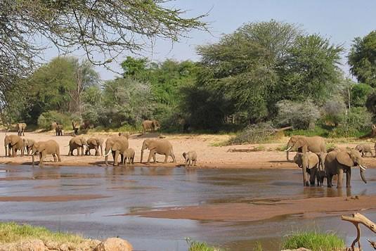 DAY 1: NAIROBI -  SAMBURU